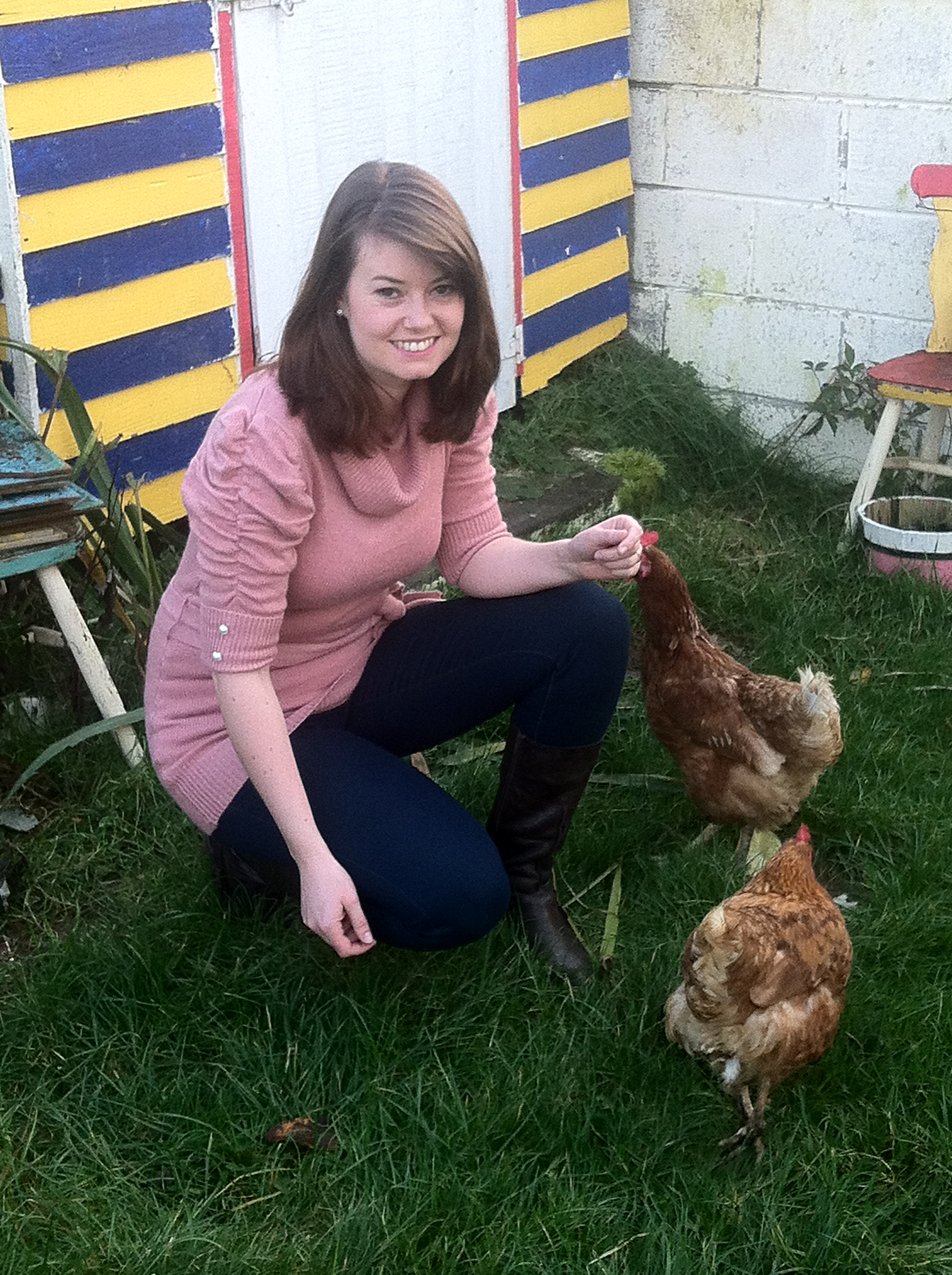 Getting and Owning Hens | A Home Made By Committee