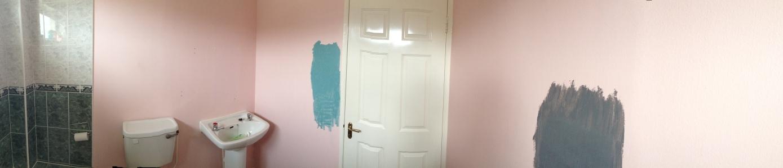 Bathroom Paint test