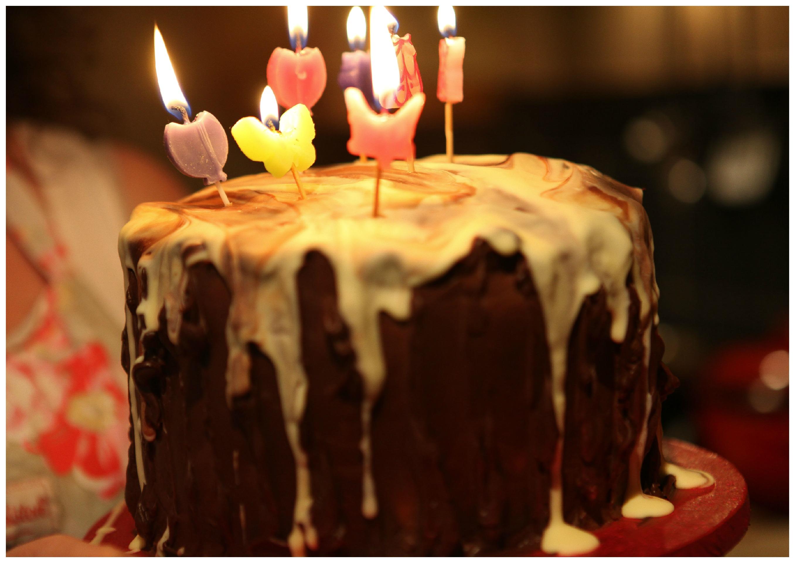 Primrose Bakery Chocolate Cake Gluten Free VO81choccake5a